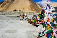 Bönflagga i Pangong Tso, Ladakh region, norr Indien Royaltyfri Foto