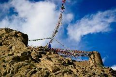 Bönflagga på den Ladakh regionen Arkivbilder