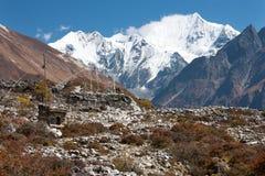 Bönflaggor i den Langtang dalen, Himalayas, Nepal Arkivfoton