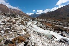 Bönflaggor i den Langtang dalen, Himalayas, Nepal Royaltyfri Foto