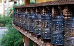 bönhjul Royaltyfri Bild