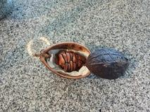 Bönor för kakao för kakaobönor på en tabell royaltyfri foto