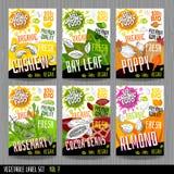 Bönor för kakao för vallmo för kasju för design för packe för kryddor för etiketter för grönsak för samling för klistermärkear fö stock illustrationer