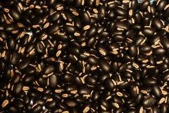 Bönor för kakaoZinho kaffe Royaltyfria Bilder