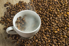 bönor frukosterar ideal isolerad makro för kaffe över white Arkivfoton