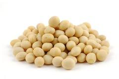 bönor stänger upp soy arkivbild