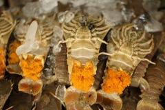 Bönsyrsaräka - squillabönsyrsa - med fiskromen, ny skaldjur Fotografering för Bildbyråer