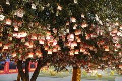 Bönträd på Guan Yu Temple Arkivbild