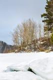 Början av våren på floden Siberia Ryssland arkivbild