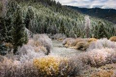 Början av vintern Easley Creek idaho Fotografering för Bildbyråer