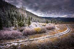Början av vintern Easley Creek idaho Arkivbild