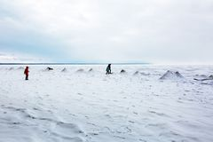 Början av vintern, frysa av Oben av Novosibirsken r Fotografering för Bildbyråer