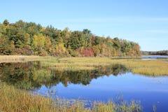 Börjande Fallfärger längs vattenkanten Royaltyfri Bild