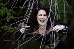 Böse Hexe versteckt sich hinter den Büschen Lizenzfreie Stockbilder