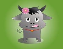 búfalo Imagem de Stock Royalty Free