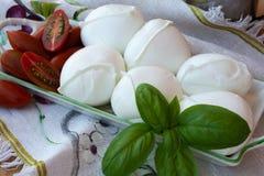 Búfalo branco italiano macio fresco da mussarela do queijo, original para Foto de Stock Royalty Free