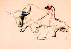 Búfalo y pato Fotografía de archivo