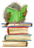 Búho Buho lindo ejemplo de libros de escuela Pájaro de la historieta ilustración del vector