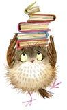 Búho Buho lindo pájaro del bosque de la acuarela ejemplo de libros de escuela Pájaro de la historieta ilustración del vector