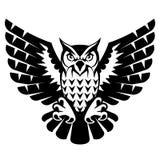 Búho con las alas y las garras abiertas Imagen de archivo libre de regalías