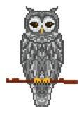 Búho de cuernos del bosque gris del arte del pixel que se sienta en una rama Imagen de archivo libre de regalías
