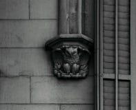 Búho en el capital por la ventana Imagenes de archivo