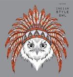 Búho en la cucaracha india Tocado indio de la pluma del águila Tienda extrema del deporte Imagen de archivo