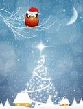 Búho en la Navidad Foto de archivo