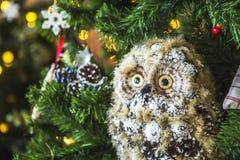 Búho en un árbol de navidad verde Fotos de archivo libres de regalías
