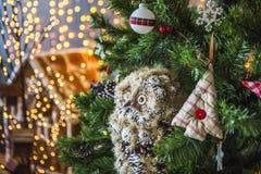 Búho en un árbol de navidad verde Imagen de archivo libre de regalías
