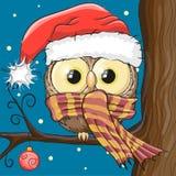 Búho en un sombrero de Papá Noel Imagen de archivo libre de regalías