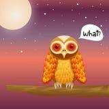 Búho lindo del vector en fondo del cielo nocturno stock de ilustración