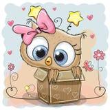 Búho lindo en una caja ilustración del vector