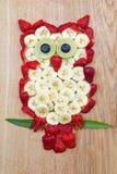 Búho lindo, hecho de frutas Imagen de archivo libre de regalías
