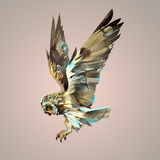 Búho que vuela aislado brillante pintado ilustración del vector