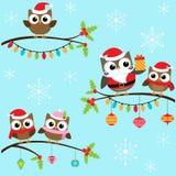 Búhos de la Navidad en ramas Imagen de archivo libre de regalías