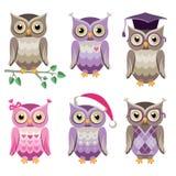 Búhos decorativos del vector Fotografía de archivo libre de regalías