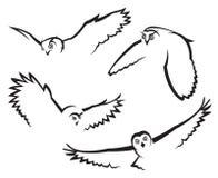 Búhos del vuelo Imágenes de archivo libres de regalías