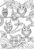 Búhos divertidos que se sientan en un árbol ilustración del vector