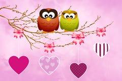 Búhos en amor Imagen de archivo libre de regalías