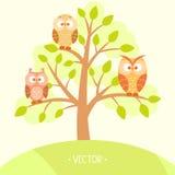 Búhos en un árbol Imágenes de archivo libres de regalías