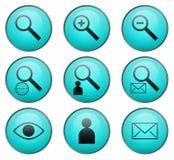 Búsqueda de iconos del Web del vector Fotografía de archivo