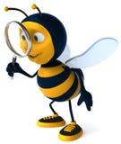 Búsqueda de la abeja Fotos de archivo