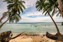 Búsqueda hacia fuera de ondas en el paraíso tropical de Siargao, Filipinas imágenes de archivo libres de regalías