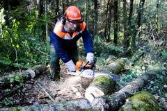 Bûcheron dans l'usage protecteur de travail de sécurité avec la tronçonneuse à la forêt images stock