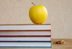 Bücher Ablesen und Studie Lizenzfreie Stockfotos