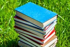 Bücher auf dem Gras Stockfoto