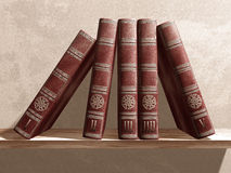 Bücher auf einem Regal Lizenzfreie Stockfotos