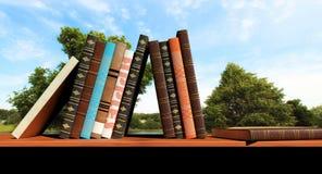 Bücher auf einem Regal Stockfotos