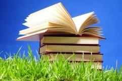 Bücher auf Gras. Pädagogisches Konzept. Stockbilder